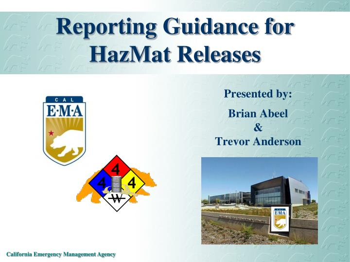 Reporting Guidance for