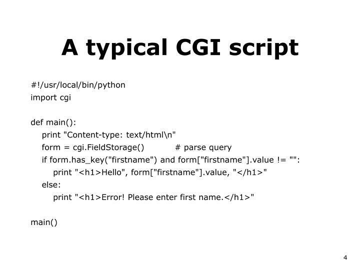 A typical CGI script