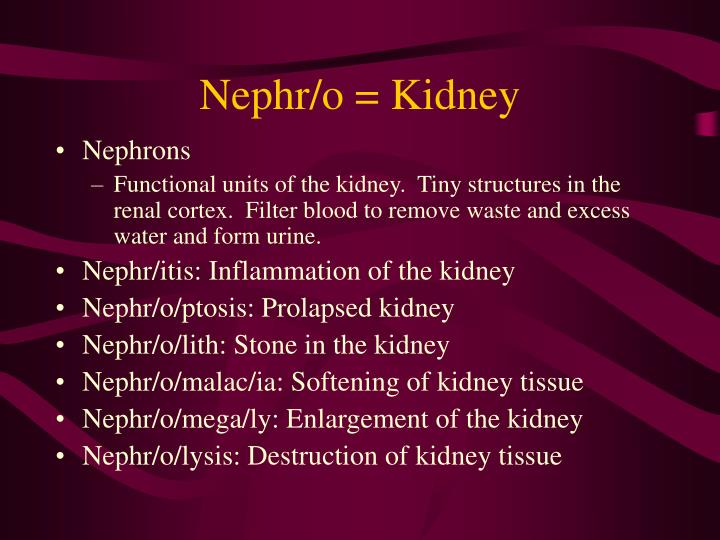 Nephr/o = Kidney