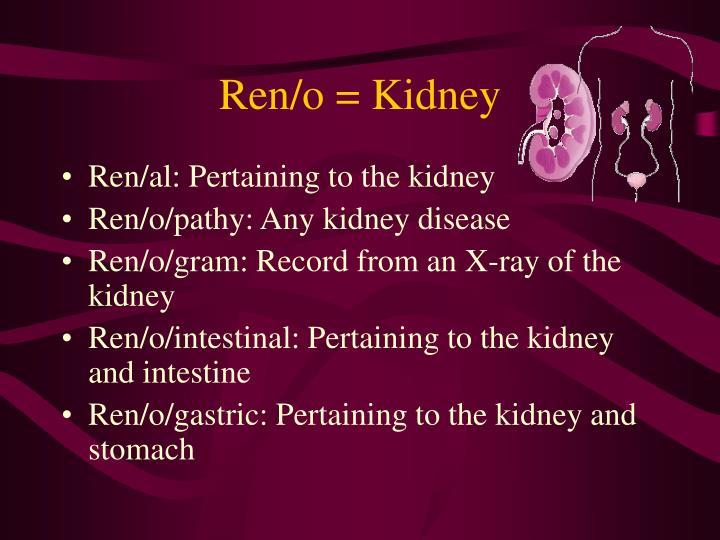 Ren/o = Kidney