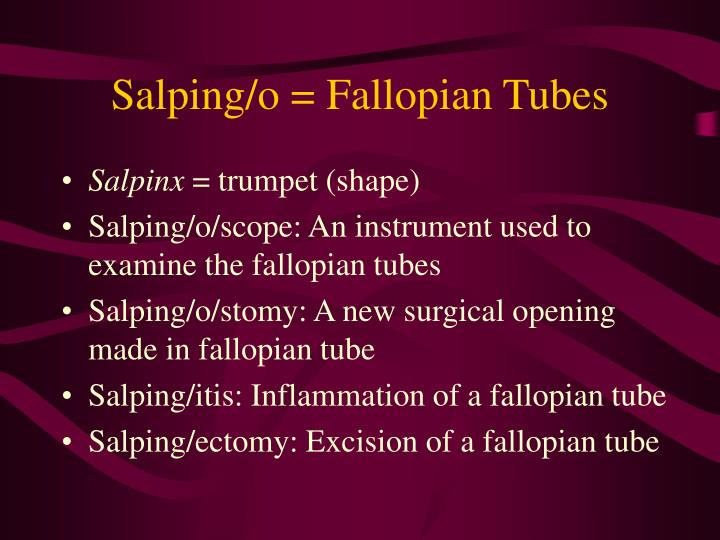 Salping/o = Fallopian Tubes