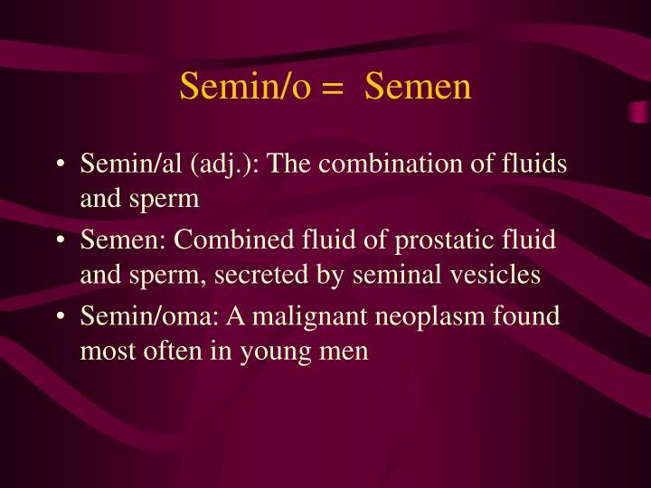 Semin/o =  Semen