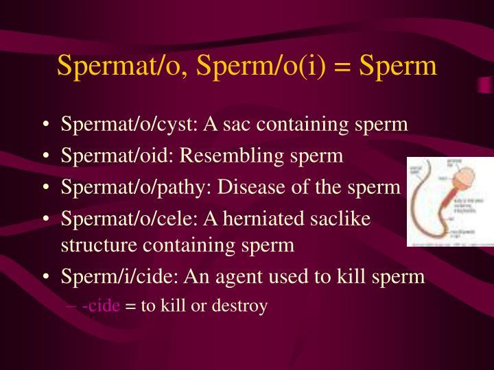 Spermat/o, Sperm/o(i) = Sperm