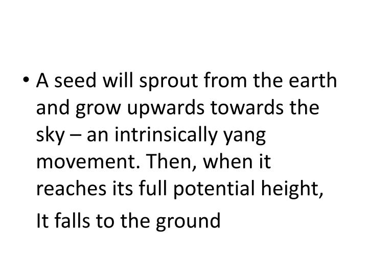 A seed will sprout from the earth and grow upwards towards the sky – an intrinsically yang movement. Then, when it reaches its full potential height,