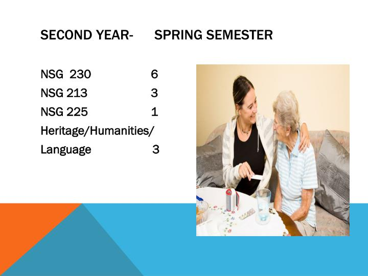 Second Year-      Spring semester
