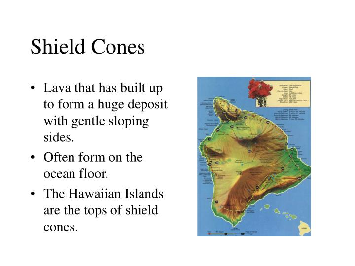 Shield Cones