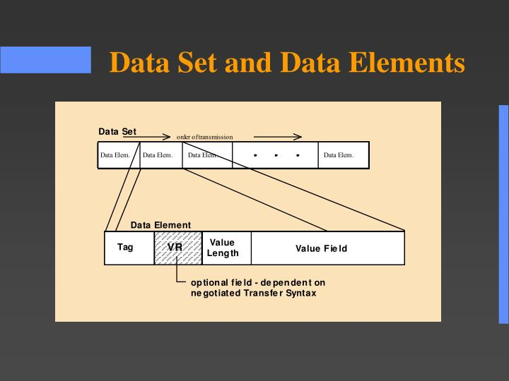 Data Set and Data Elements