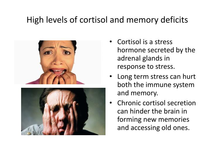 High levels of cortisol and memory deficits