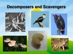 decomposers and scavengers1