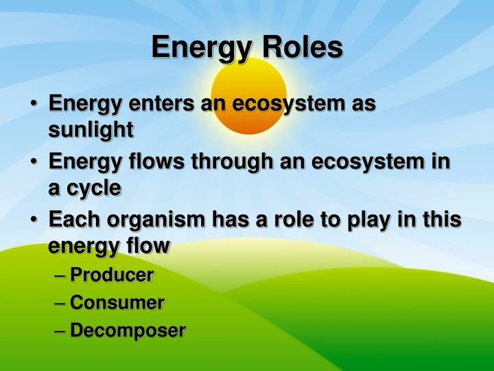 Energy Roles