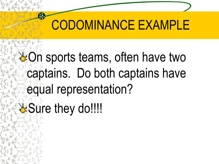 CODOMINANCE EXAMPLE