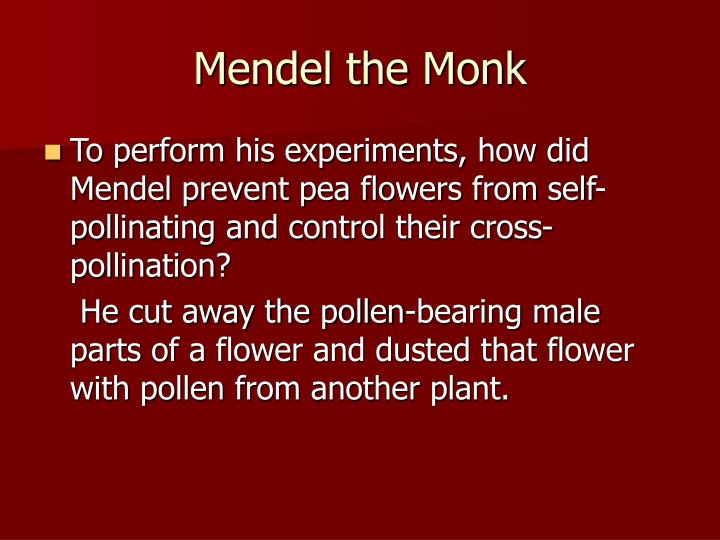 Mendel the Monk
