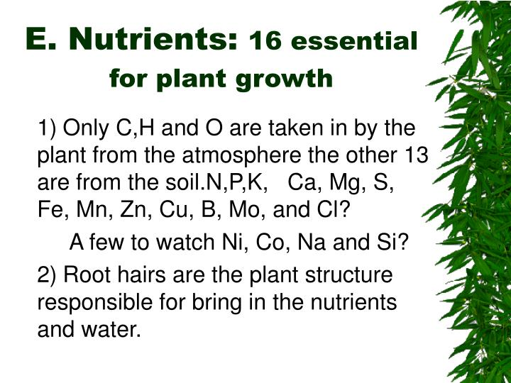 E. Nutrients: