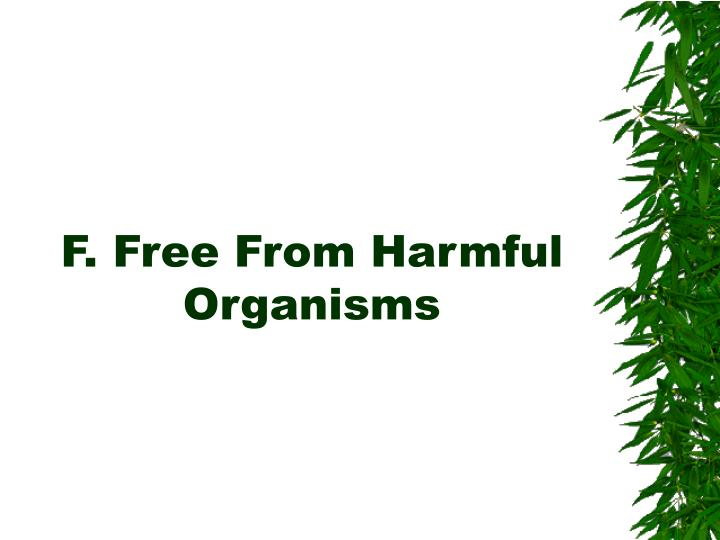 F. Free From Harmful Organisms