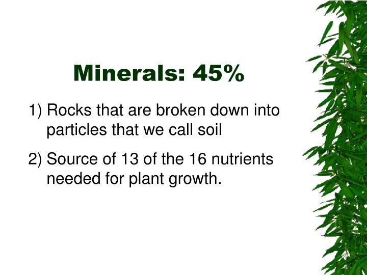 Minerals: 45%