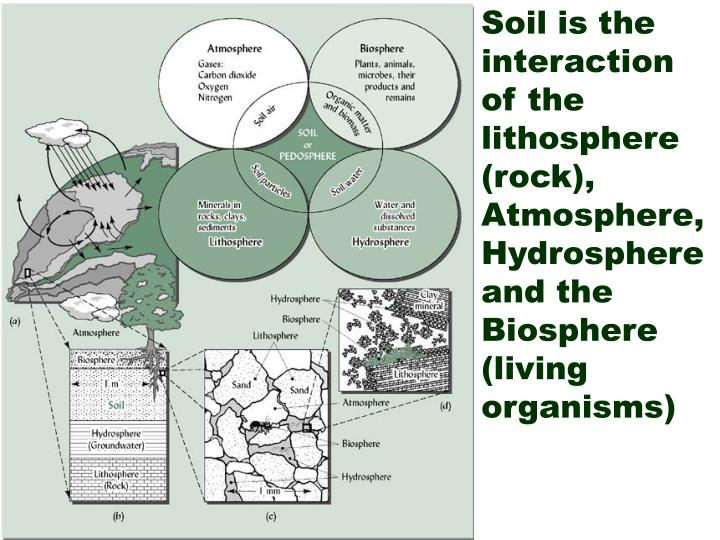 Soil is the interaction of the lithosphere (rock), Atmosphere, Hydrosphere and the Biosphere (living organisms)