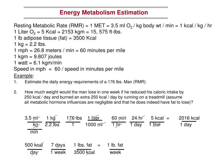 Energy Metabolism Estimation