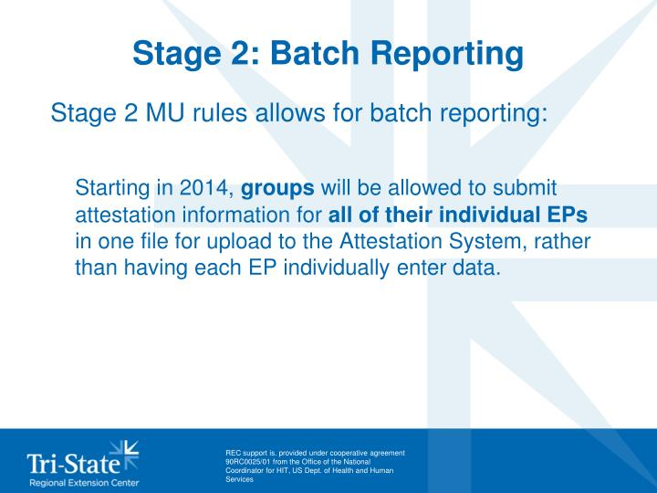 Stage 2: Batch Reporting