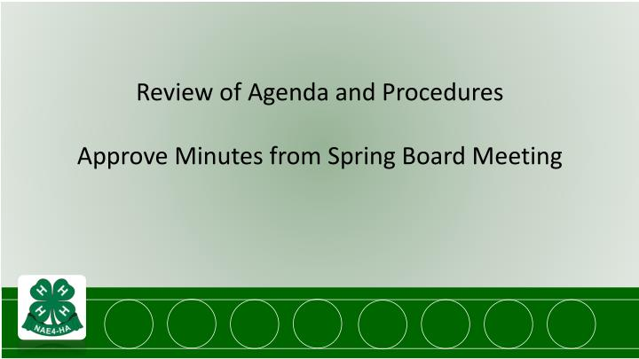 Review of Agenda and Procedures