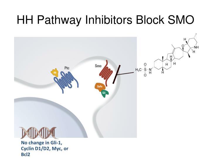 HH Pathway Inhibitors Block SMO