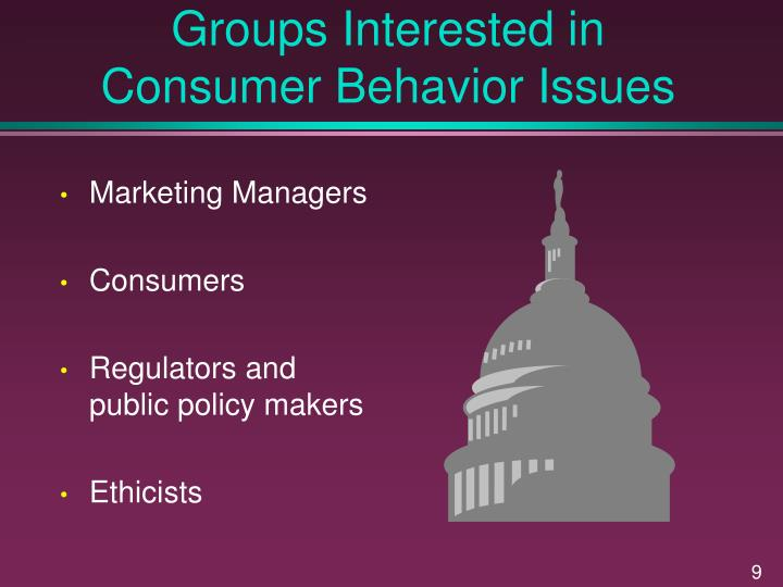 Groups Interested in Consumer Behavior Issues