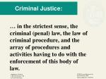 criminal justice1