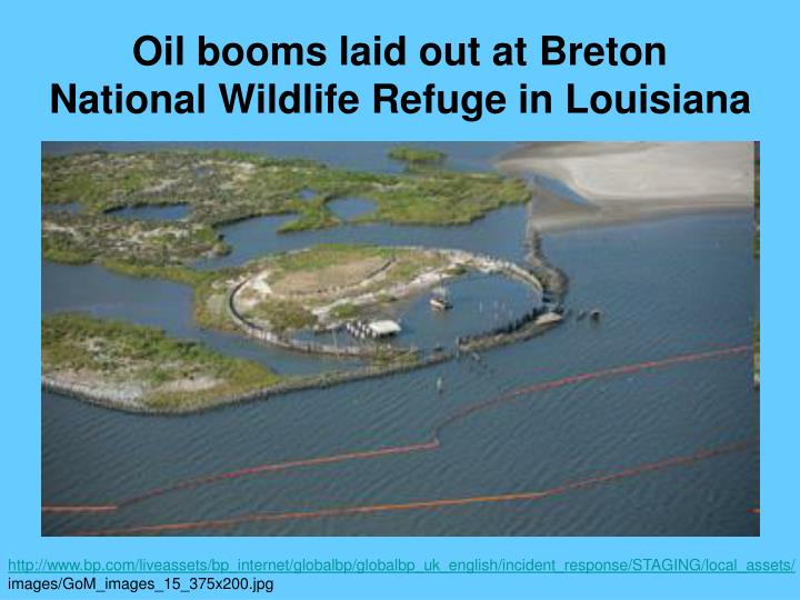 Oil booms laid out at Breton National Wildlife Refuge in Louisiana