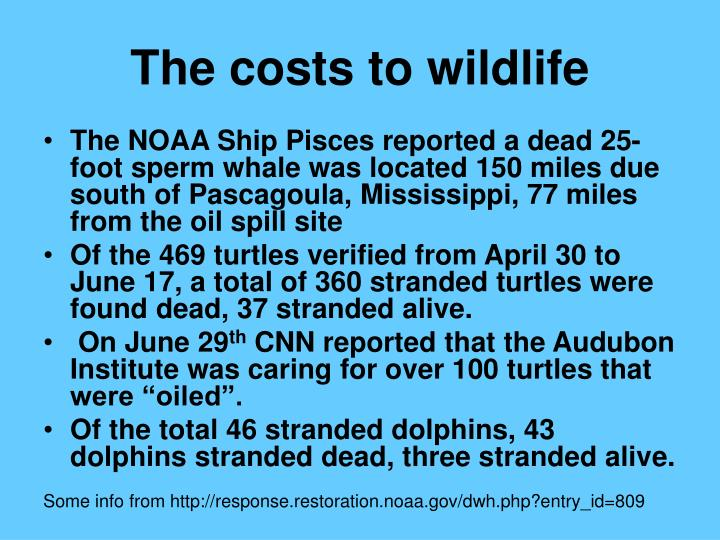 The costs to wildlife