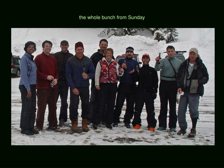 the whole bunch from Sunday