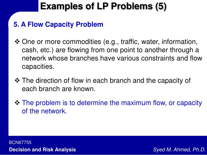 Examples of LP Problems (5)