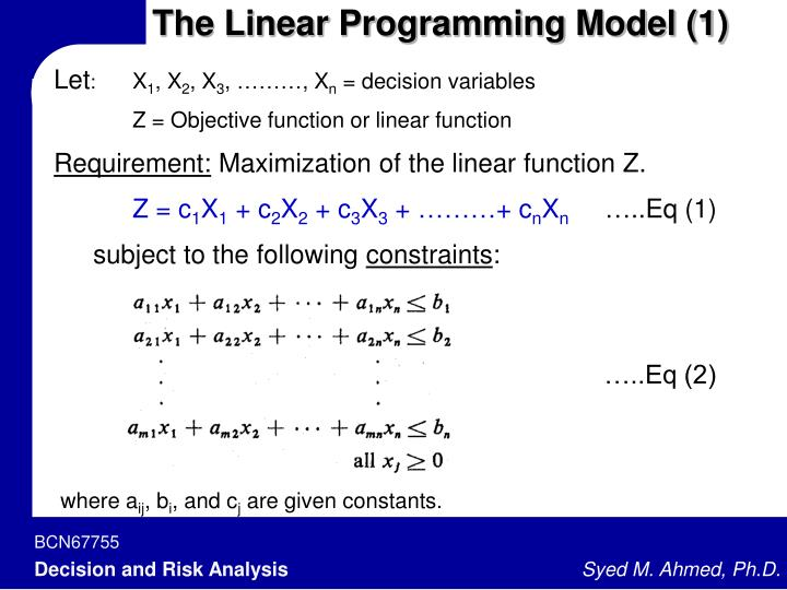 The Linear Programming Model (1)