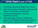 open dumps and litter