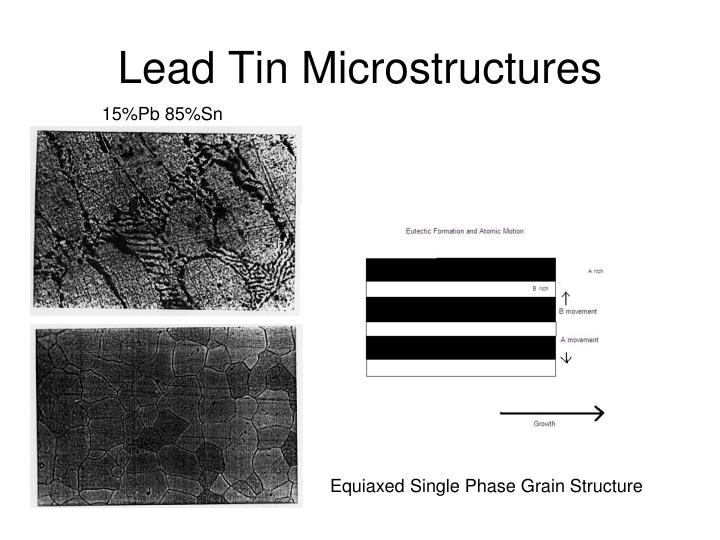 Lead Tin Microstructures