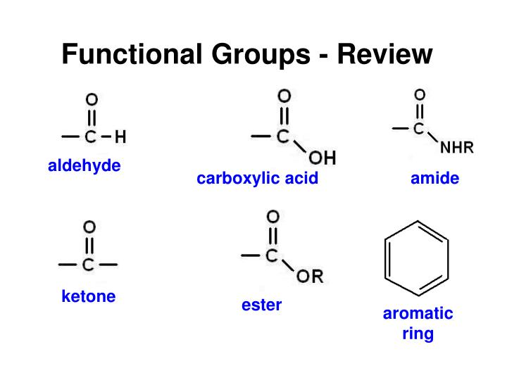 Functional Groups - Review