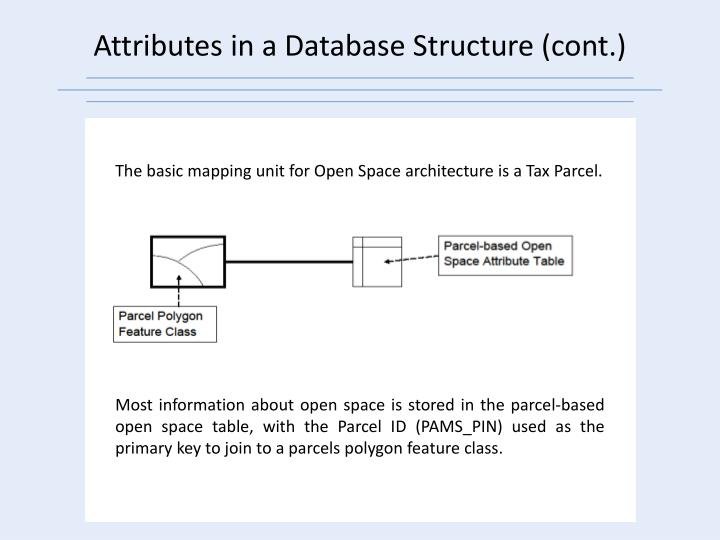 Attributes in a Database Structure (cont.)