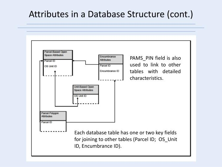 Attributes in a Database