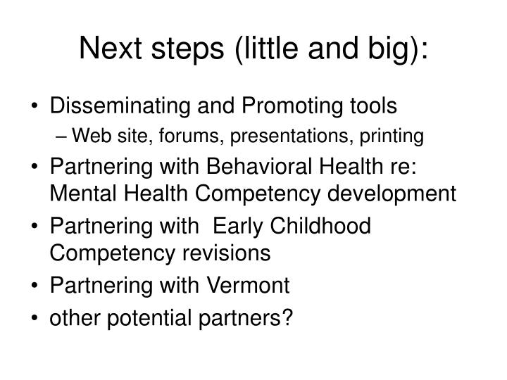 Next steps (little and big):