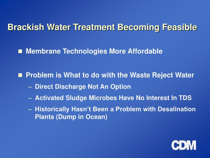 Brackish Water Treatment Becoming Feasible