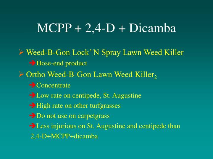 MCPP + 2,4-D + Dicamba