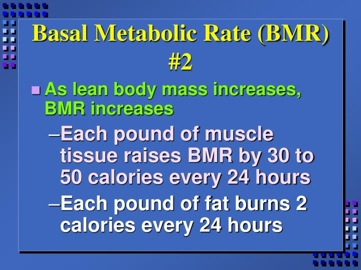 Basal Metabolic Rate (BMR) #2