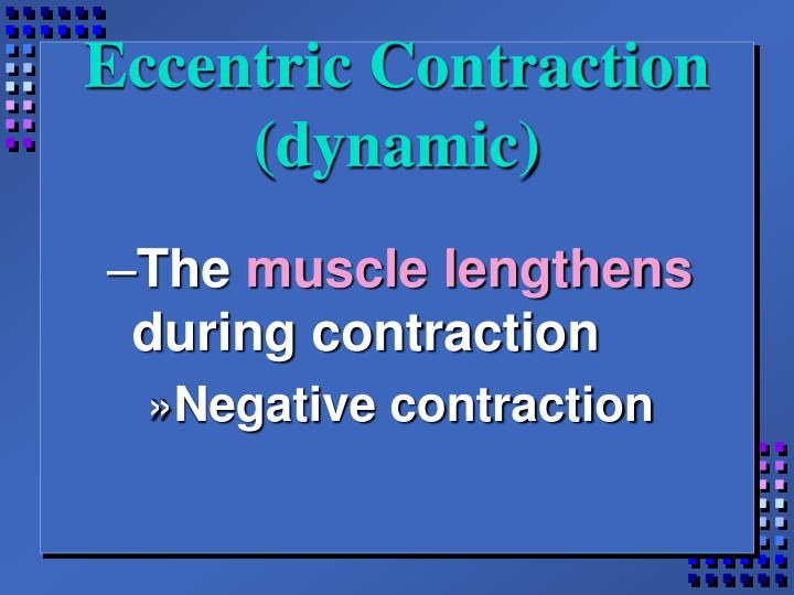 Eccentric Contraction (dynamic)