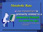 metabolic rate1