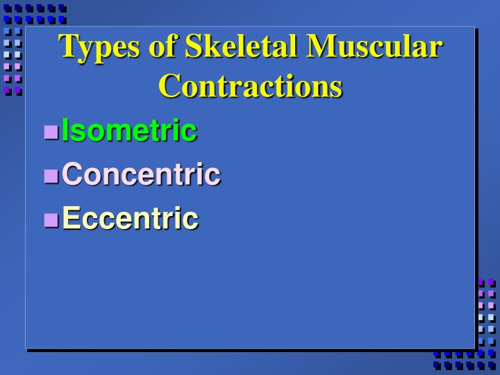 Types of Skeletal Muscular Contractions