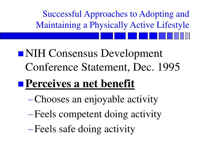Successful Approaches to Adopting and Maintaining a Physically Active Lifestyle