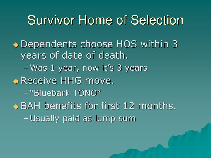 Survivor Home of Selection