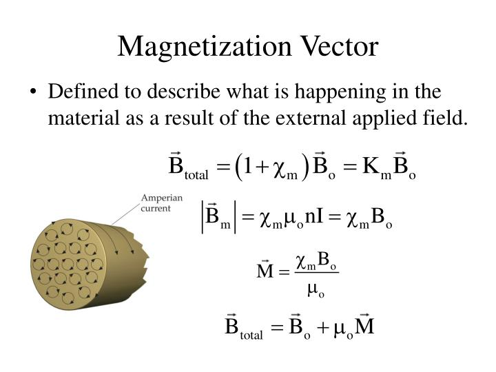 Magnetization Vector