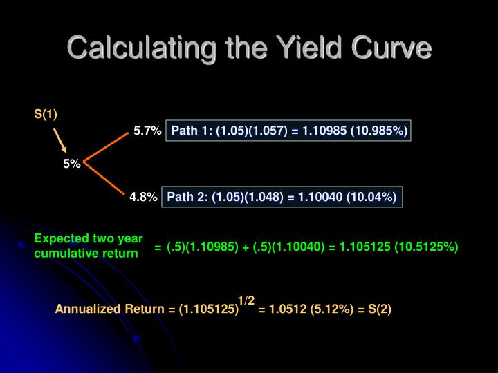 Calculating the Yield Curve
