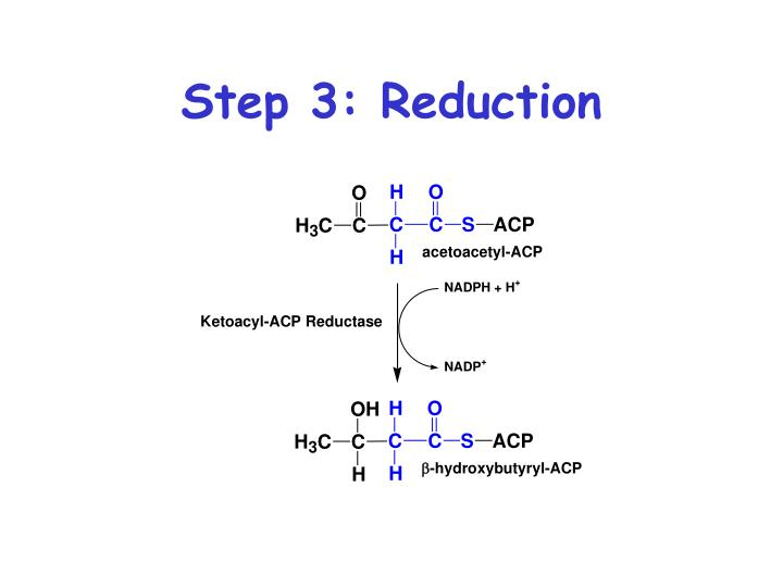 Step 3: Reduction