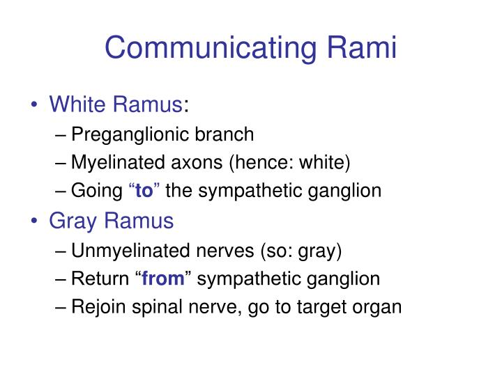 Communicating Rami