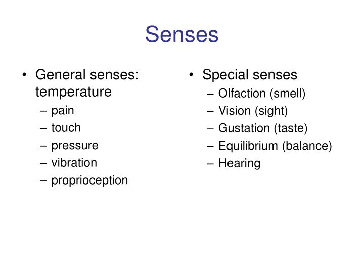 General senses: temperature